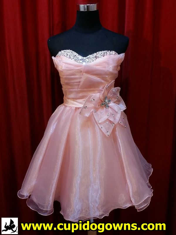 SD0174-1 Sweet Peach Dinner Gown